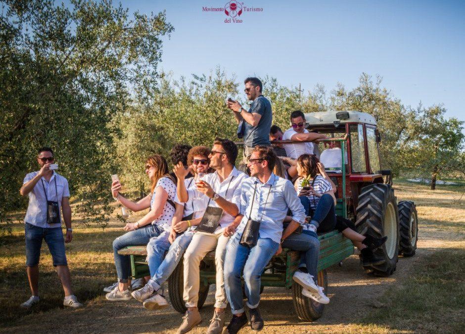 Vino e valorizzazione del territorio. Intervista al Movimento Turismo del Vino.